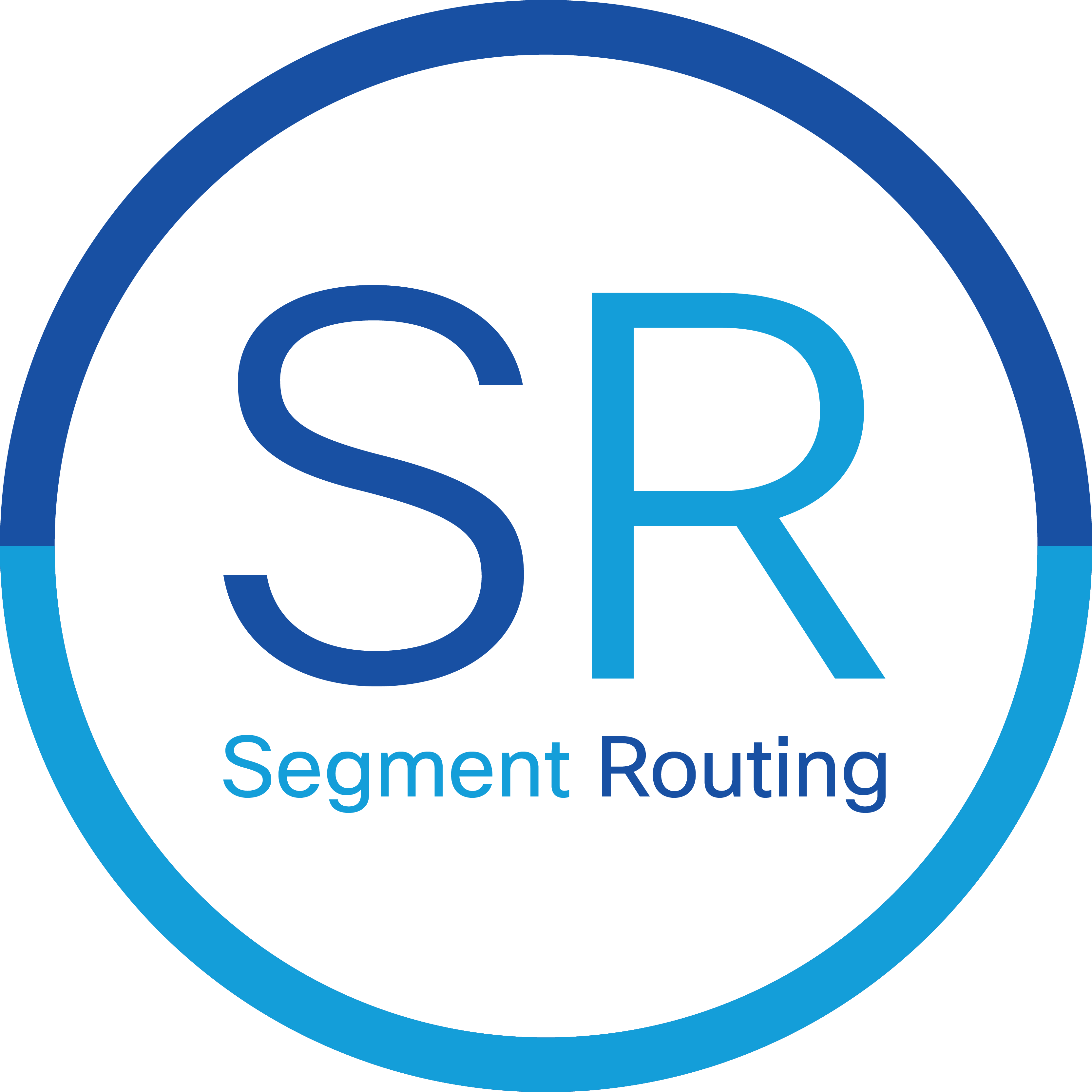 Segment-Routing logo